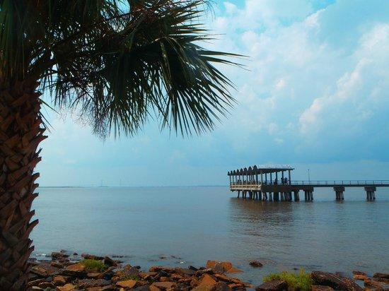 Driftwood Beach: pier at driftwood