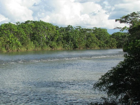 Isla Ecologica Mariana Miller Lodge: river view