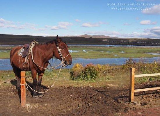 Shiwei Russia Nationality Township : border