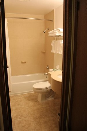 Olympic Suites Inn: Bathroom