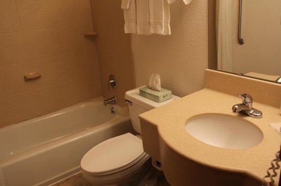 Olympic Suites Inn: Bathroom