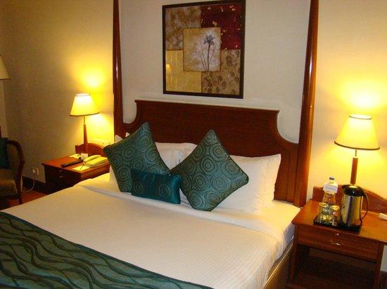 Park Prime Hotel Jaipur : Номер