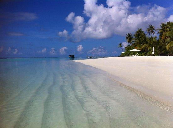 Vakarufalhi Island Resort: 30°C di acqua limpidissima