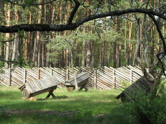 Latvian Ethnographic Open Air Museum: Этнографический музей.