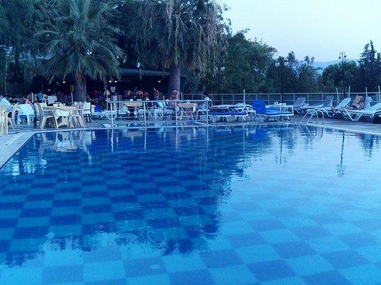Arora Hotel: замечательный бассейн