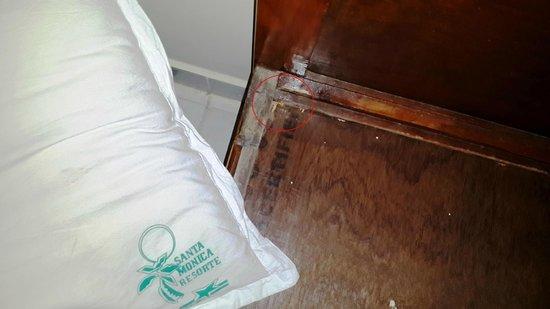 Santa Monica Resorte : Broken Beds