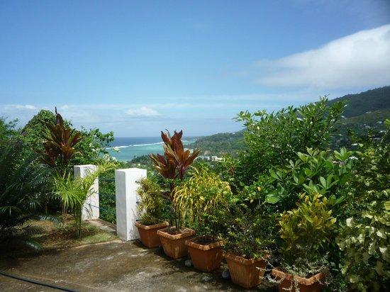 Villa Citronella: Вид с террасы