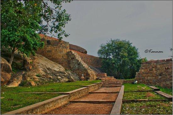 Thirumayam Fort: Way to fort