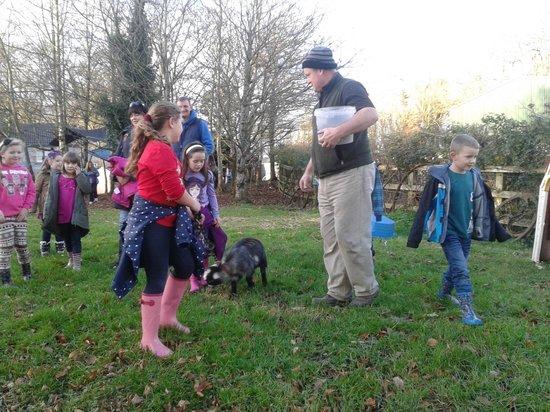 imecofarm: Setting off on Farm Walk