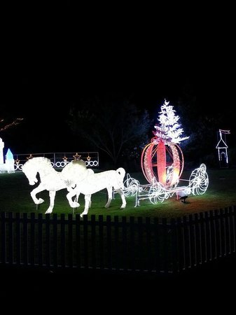 Hunter Valley Gardens: Hunter valley Garden Light Spectacular
