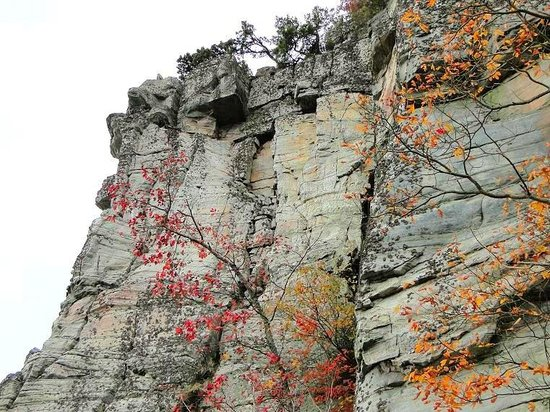 Pilot Mountain State Park: looking up at the pinnacle