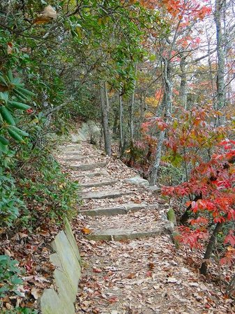 Pilot Mountain State Park: trail to pinnacle
