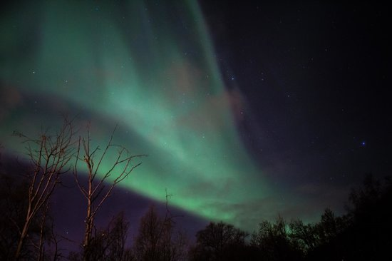 Magic Mountain Lodge: Beautiful aurora from outside our room