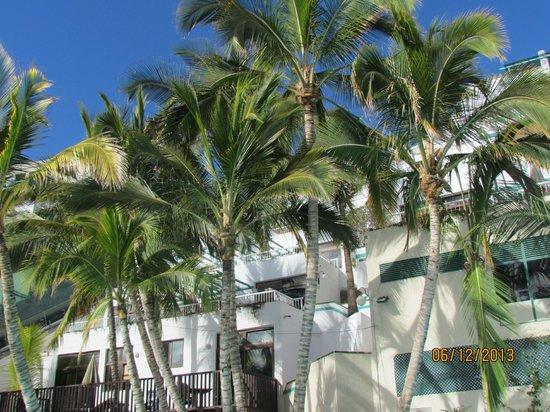 Hotel Altamar: Near the pool