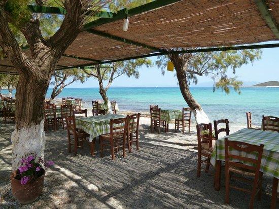 Notaras Hotel: Il bar alla spiaggia