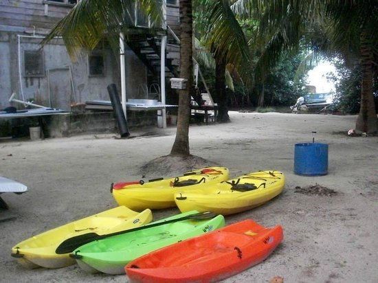 PAUSE Hostel : Some of the new Kayaks available for hire