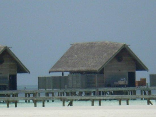 Cocoa Island by COMO: Loft villa