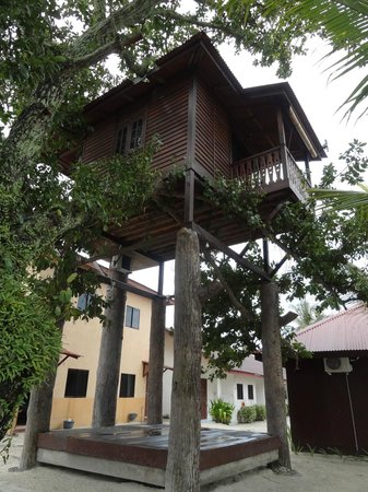 Malibest Resort: the tree house again