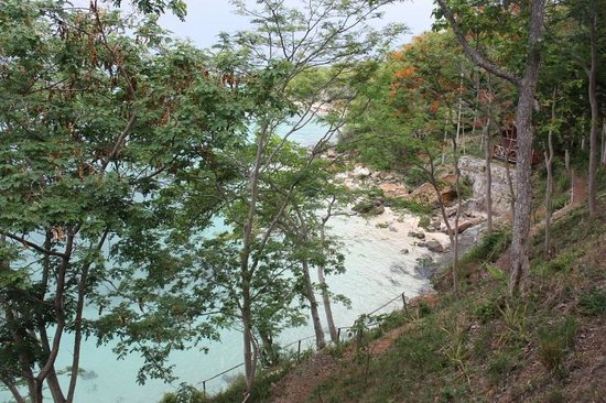Ankify Lodge: пляж - вид сверху