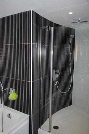 Novotel Suites Malaga Centro : Bagno