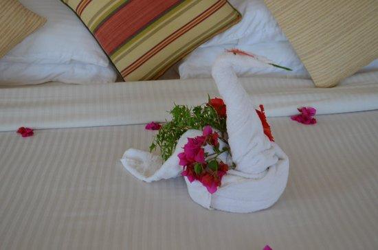 Royal Zanzibar Beach Resort: 5