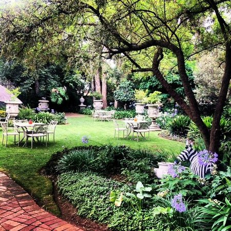 Sandton Boutique Hotel - 28A on Oxford: Garden at Sandton Boutique Hotel