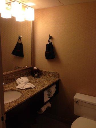 Des Moines Marriott Downtown: Bathroom