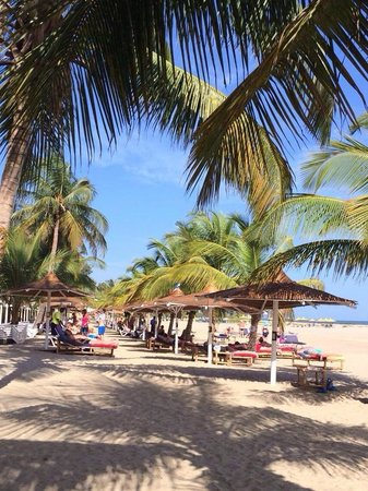 Ocean Bay Hotel & Resort : Ocean Bay Beach