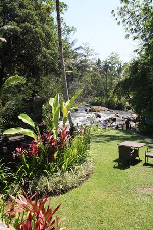 The Samaya Bali Ubud: view from lunch/dinner area