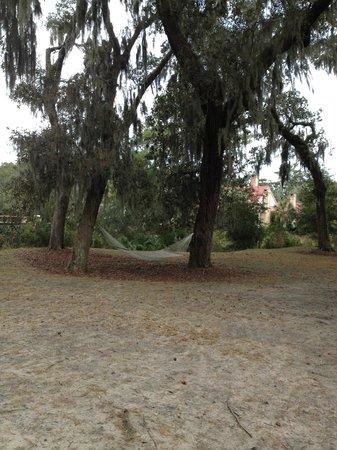 Montage Palmetto Bluff: Hammock near treehouse