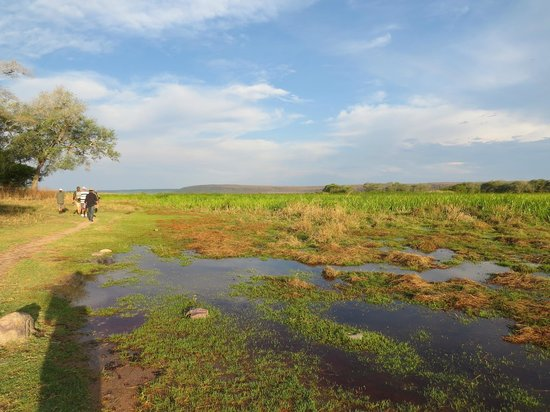 Ndole Bay Lodge: Walking in the National Park