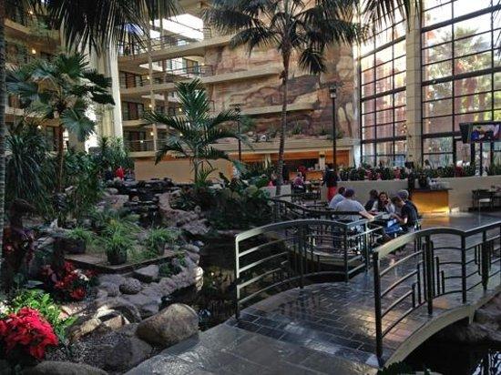 Embassy Suites by Hilton Hotel Phoenix Biltmore: No troll under this bridge...just fish