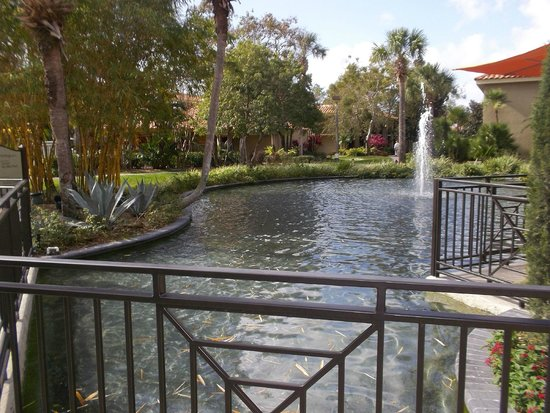 Doubletree by Hilton Orlando at SeaWorld: Hotel grounds