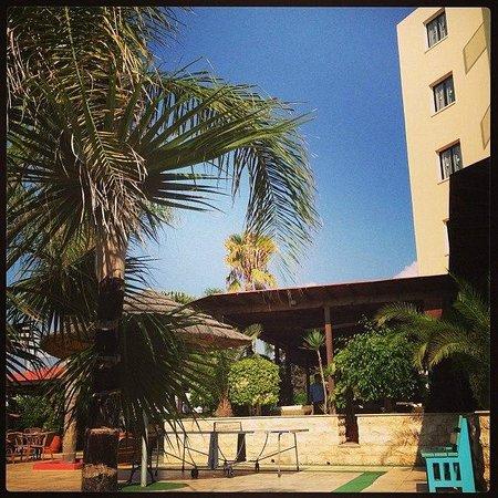 Stamatia Hotel : Бар отеля