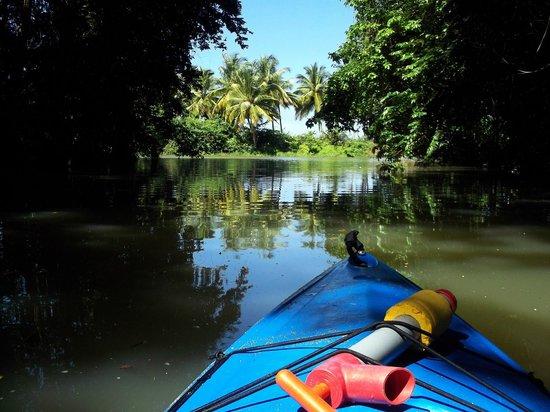 DFH Kayaking: Gorgeous!!!
