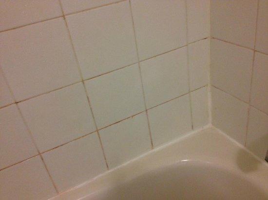 Hotel & Suites Les Laurentides : Tiles in Bath