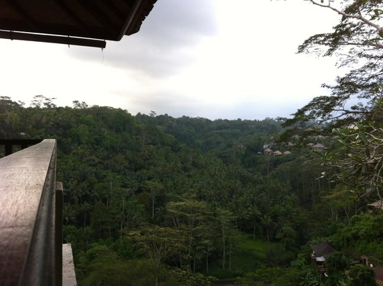 Puri Bunga Resort and Spa: view of the valley