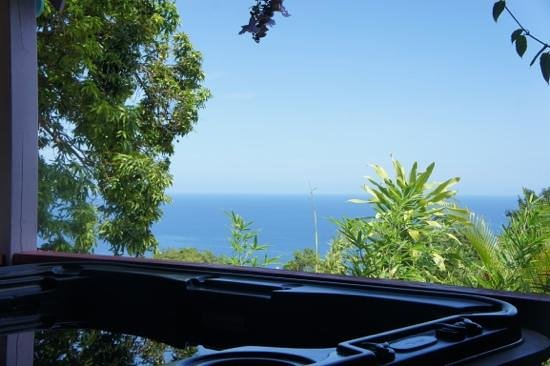 Tendacayou Ecolodge & Spa : Vue depuis le jaccuzi de la Mamoune