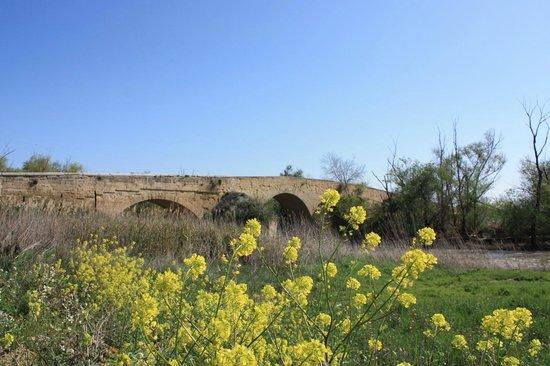Ponte Romano sul Fiume Ofanto