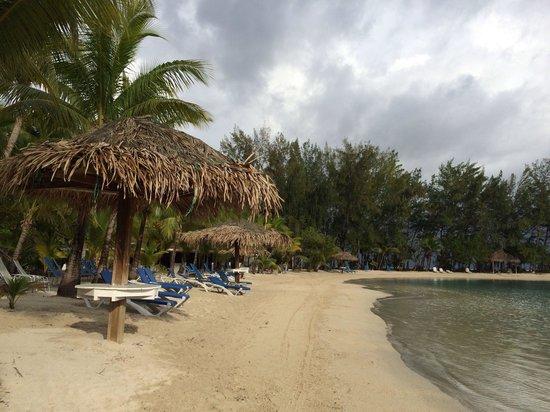 Fantasy Island Beach Resort : Beach.