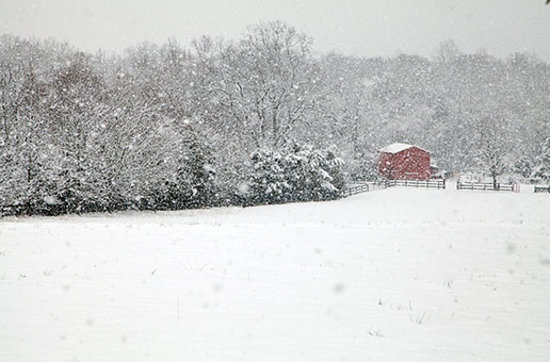 Virginia: Scenic Louisa County