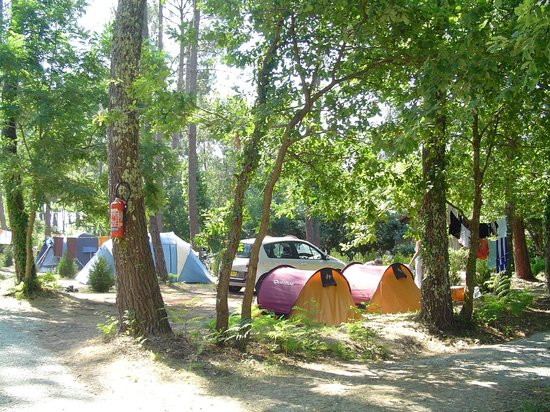 Camping Calède : Emplacements camping