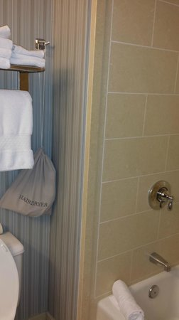 DoubleTree by Hilton San Diego - Del Mar: Shower and blow dryer