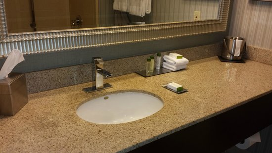 DoubleTree by Hilton San Diego - Del Mar: Bathroom sink 2