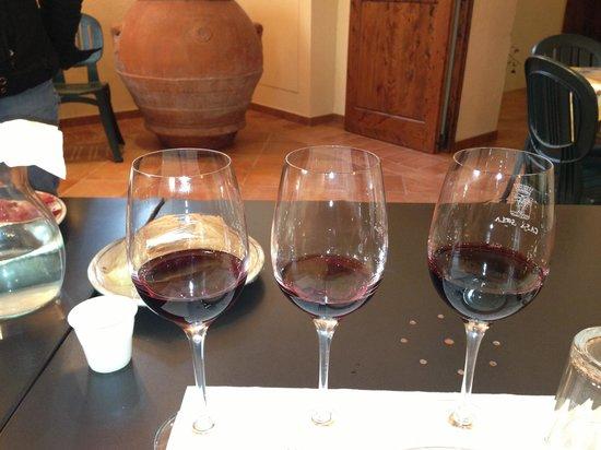 Casa Sola - Chianti Winery: Sampling :)