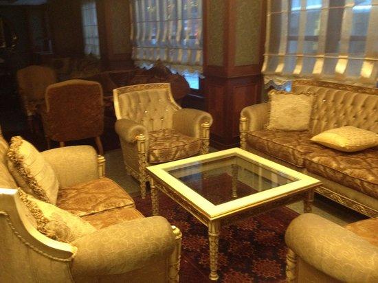 Hotel Sapphire: hall-salones