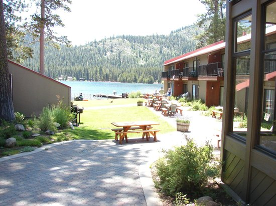 Donner Lake Village: Lawn Area next to Beach
