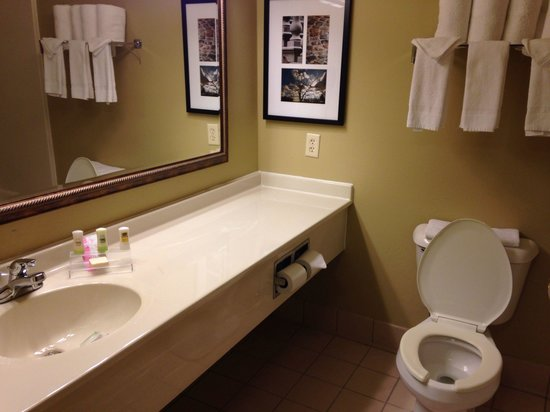 Country Inn & Suites by Radisson, Bloomington-Normal Airport, IL: Very clean, beautifully decorated bathroom