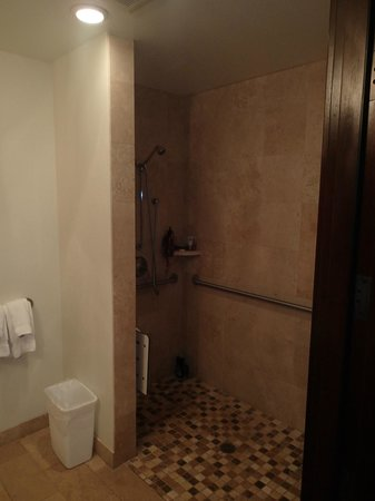 Waipouli Beach Resort: The room had a walk in shower!