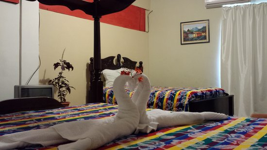 Rainforest Haven Inn : Double room with 2 double beds
